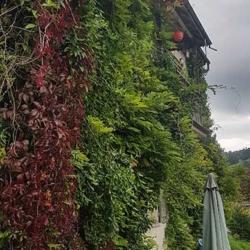 Tunnelweg_Wattwil (1)